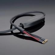 Transparent MusicWave Ultra Bi-Wiring