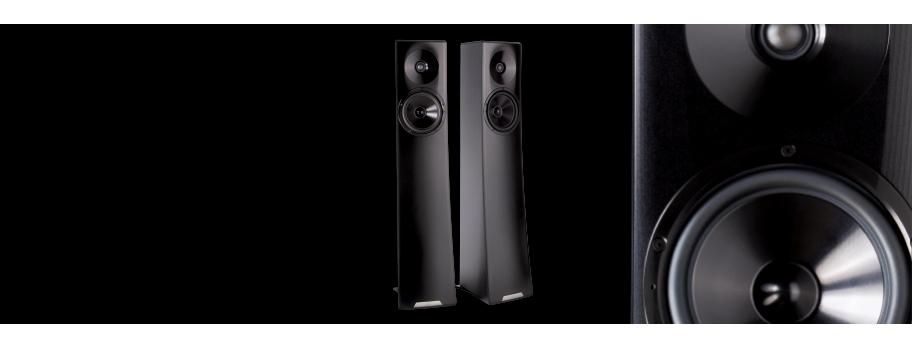 YG Acoustics Carmel2